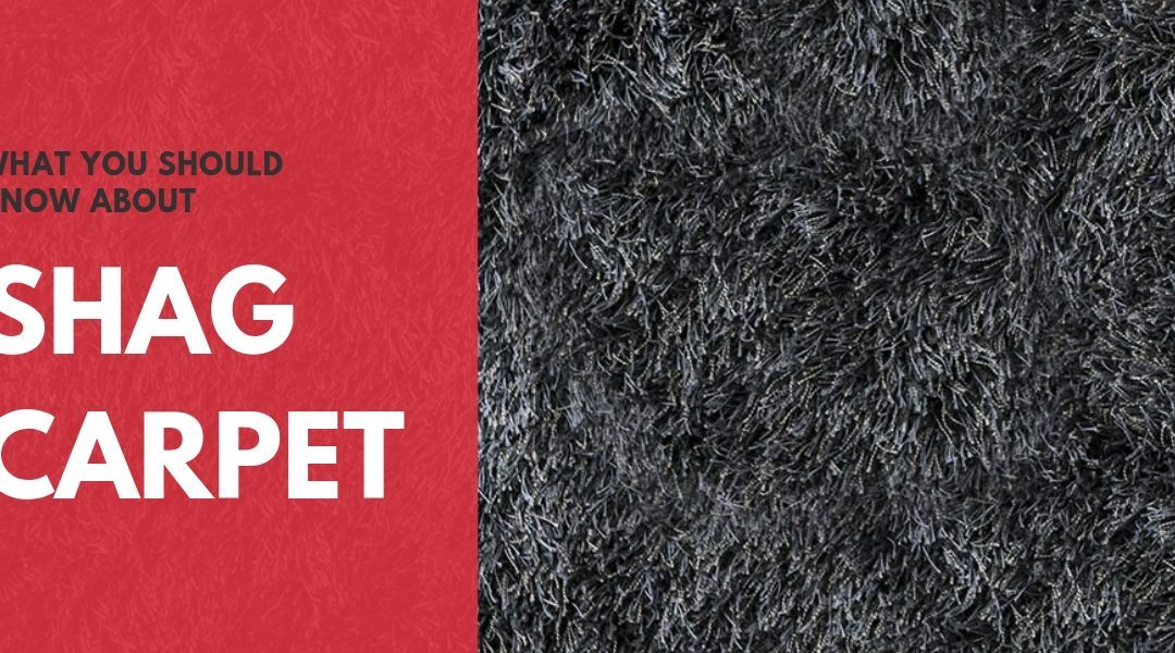 What You Should Know About Shag Carpet
